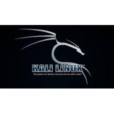 Kali Linux installer